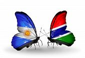 Two Butterflies With Flags On Wings As Symbol Of Relations Argentina And Gambia