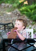 Little Boy Eating A Chocolate Bunny