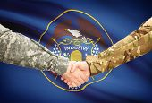 picture of soldier  - Soldiers handshake and US state flag  - JPG
