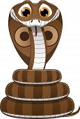 picture of cobra  - vector illustration - JPG