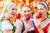 pic of national costume  - Friends visiting together Bavarian fair in national costume eating candy apple - JPG