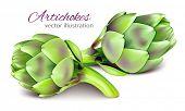 stock photo of artichoke hearts  - Artichokes - JPG
