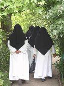 Back View Of Nuns Walking Through Garden