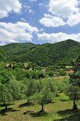 image of apennines  - Italian countryside - JPG