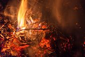 pic of bonfire  - Flames of bonfire at night burning cardboard and dry branches - JPG