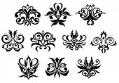 stock photo of gothic  - Assorted decorative black gothic flowers and blossoms set isolated on white background - JPG