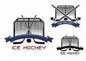 picture of ice hockey goal  - Ice hockey game sports symbols or emblems with crossed hockey sticks - JPG
