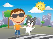 stock photo of zebra crossing  - Happy blind child with cane and sunglasses cross the road at a zebra crossing with his quide dog in a sunny day in the city - JPG