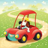 Funny dog on a car.
