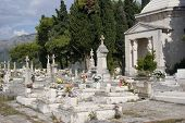the graveyard in cavtat croatia near to dubrovnik