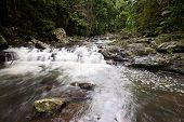 Cascada en el bosque de lluvia