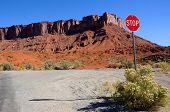 Desert Road Crossing near Moab and Castleton