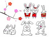 set of different cute rabbits