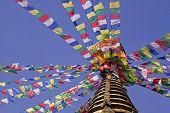 Bodhnath In Kathmandu