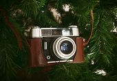 Vintage Camera Hanging On Artificial Christmas Tree poster