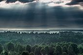 Dramatic Sunrise In The Mountains With Thick Evergreen Forest In Foreground, Altai Mountains, Kazakh poster