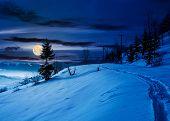Rural Footpath Through Snowy Hillside At Night poster