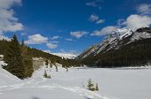 Snow Shoeing In Banff National Park