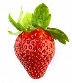 Fresh sweet strawberry isolated on white background.