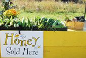 picture of cornicopia  - roadside vegetable stand with corn and honey sign - JPG