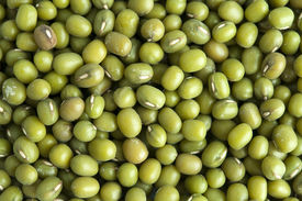 image of green bean  - Whole dried mung beans - JPG