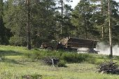 A Truck In The Forest Transports The Cut Trees. Large Transport Loaded With Pine. Timber Transports  poster