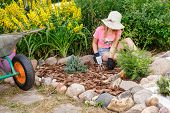 Little girl helping parents in a summer garden cultivating alpine rock garden learning to do gardeni poster