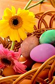 foto of easter flowers  - Early spring morning basket of easter eggs - JPG
