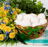 Basket with Easter eggs and spring flowers on a white background