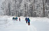 team of hikers in winter mountains