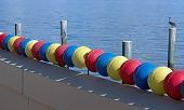Colourful Buoys