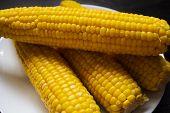 Grains Of Ripe Corn. Macro. Corn On The Cob, The Food Is Ripe, Juicy, Delicious Corn. Photo Of Corn  poster