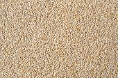 Texture Of Quinoa Grains
