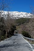 Country road, Sierra Nevada, Andalusia, Spain.