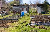 City gardening allotment