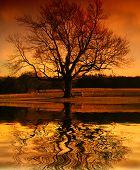 Reflexões de um pôr do sol