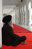 Old Man Meditating Inside Famous Religious Landmark Of Punjab - Golden Temple