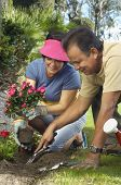 Happy middle aged man digging while woman holding flower plant in garden