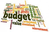 Budget concept in word tag cloud, 3d shaped, vector version
