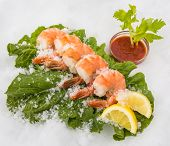 Jumbo prawns on a bed of romaine
