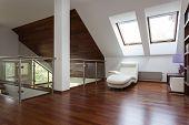 Stylish Loft