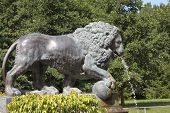 Bronze figure of a lion - a fragment of the fountain.