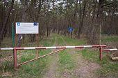 EU border forest gate