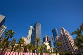 LA Downtown Los Angeles Pershing Square palm tress and skyscrapers
