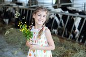 Happy little girl with wildflowers smiles and stands at cow farm.