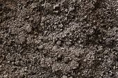image of humus  - Soil dirt background texture natural pattern stock photo - JPG