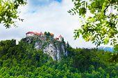 Bled Castle Cliff