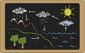 foto of transpiration  - a illustration of water cycle on blackboard - JPG