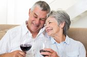 Senior couple sitting on sofa having glasses of red wine at home in living room