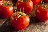 Organic Red Ripe Tomatoes